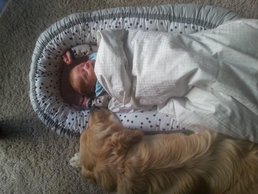 Ebbe har det tydeligvis godt i babynest og sover med det samme
