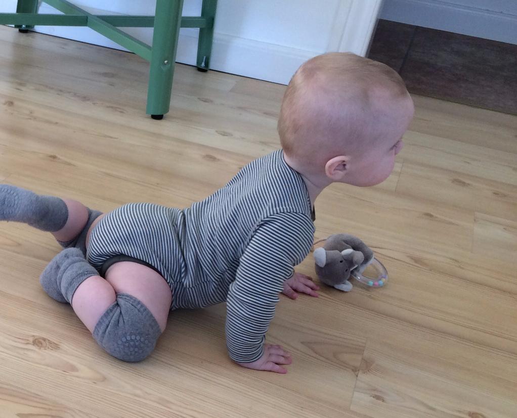 GoBabyGo knæbeskyttere var sendt fra himlen på et tidspunkt, da min dreng næsten kunne kravle, og så alligevel ikke.