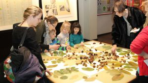 Aktiviteter i efterårsferien Naturhistorisk Museum Pixizoo