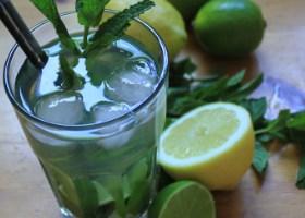 pixizoo pebermynte citron undgå morgenkvalme