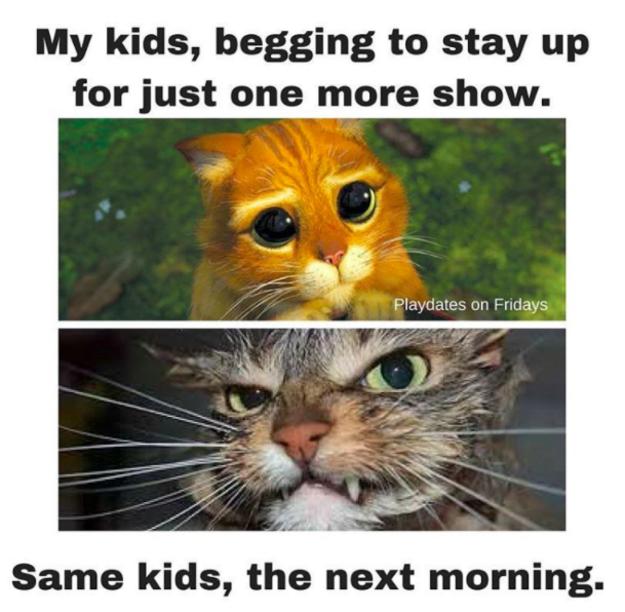 sure børn