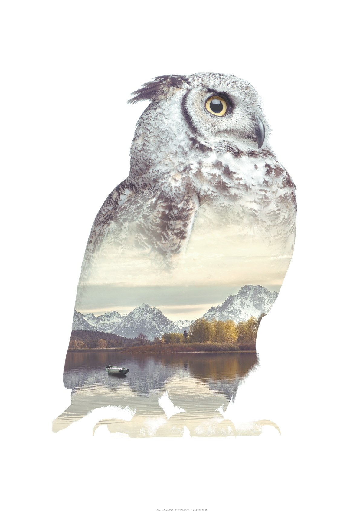 Faunascapes – Owl A3