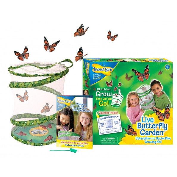 Insect Lore Butterfly Garden med voucher til larver