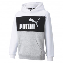 Puma ESS+ Colorblock hættetrøje - White-Silver