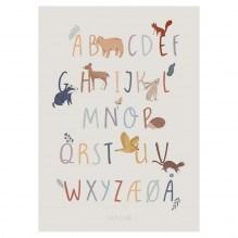Sebra Nightfall plakat m. alfabetet 50x70 cm