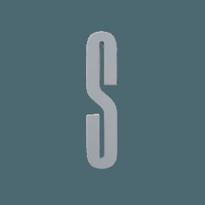 Design Letters Grey wooden letters - S