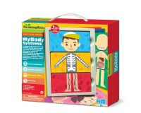 4M My Body System