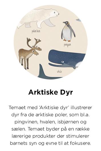 arktiske dyr